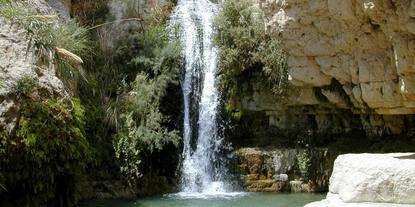 En Gedi Waterfall<br>
